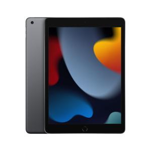 iPad Wi-Fi (2021) Space Grau