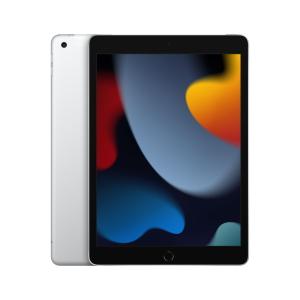 iPad Wi-Fi & Cellular (2021) Silber