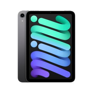 iPad mini Wi-Fi (2021) Space Gray