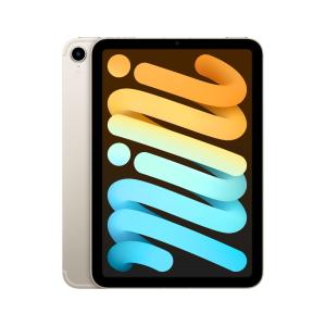 iPad mini Wi-Fi & Cellular (2021) Polarstern